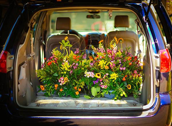 цветы в багажнике автомобиля - избавление от запаха